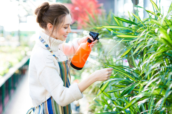 Beautiful woman gardener in colorful apron spraying flowers and plants  Stock photo © deandrobot