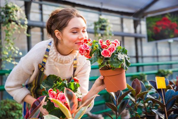 çekici sevimli kadın bahçıvan pembe çiçekler Stok fotoğraf © deandrobot