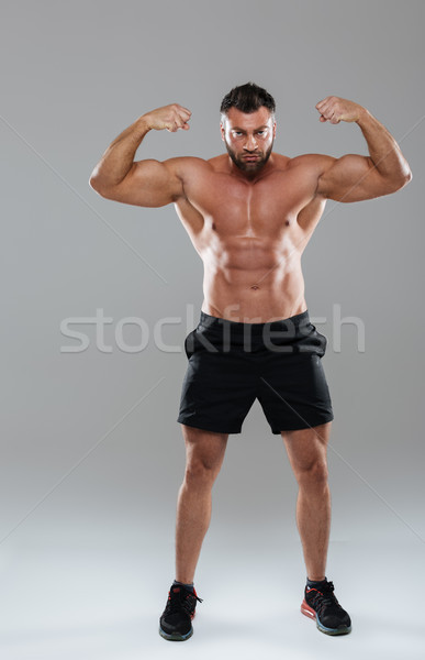Full length portrait of a muscular concentrated shirtless male bodybuilder Stock photo © deandrobot