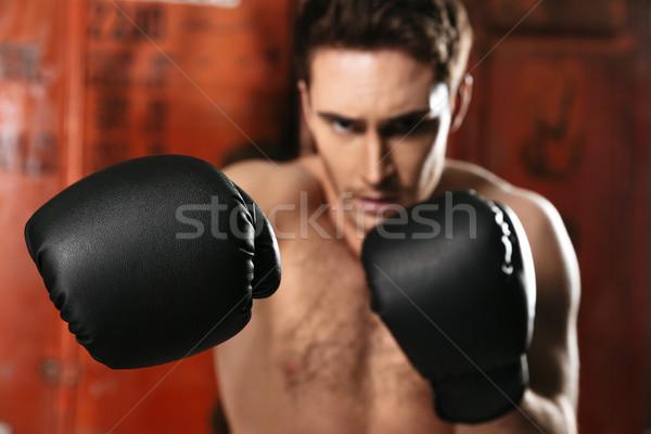 Portre boksör ayakta spor salonu poz eller Stok fotoğraf © deandrobot