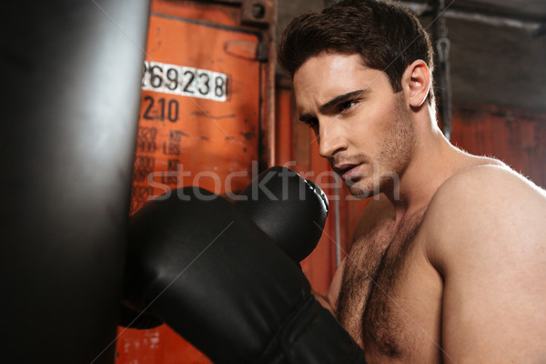 Concentrated boxer training in a gym with punchbag. Stock photo © deandrobot