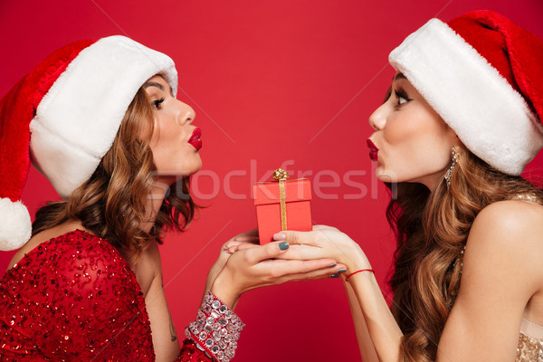 Close up portrait of two pretty women in christmas hats Stock photo © deandrobot