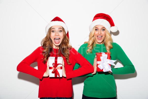 Ritratto due gioioso ragazze Natale Foto d'archivio © deandrobot
