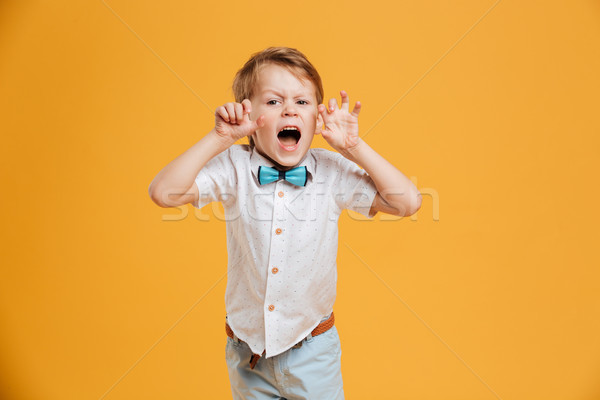 Emotional screaming little boy try to make you scare. Stock photo © deandrobot