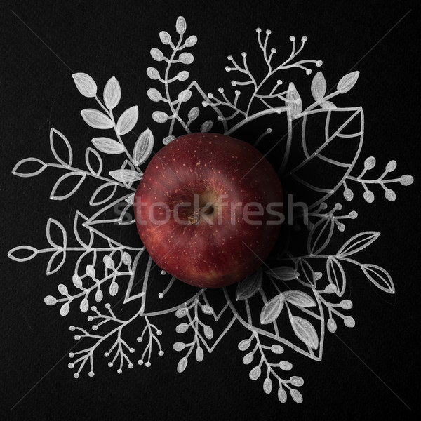 Red apple over outline floral hand drawn Stock photo © deandrobot