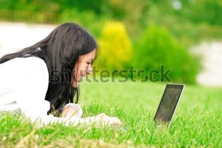 Kafkas çim çalışma dizüstü bilgisayar Stok fotoğraf © deandrobot