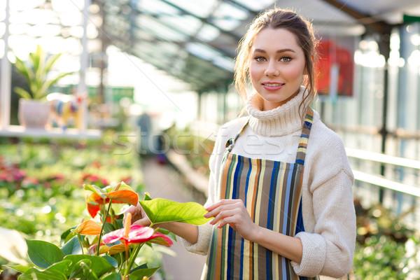 Mujer hermosa jardinero pie invernadero blanco suéter Foto stock © deandrobot
