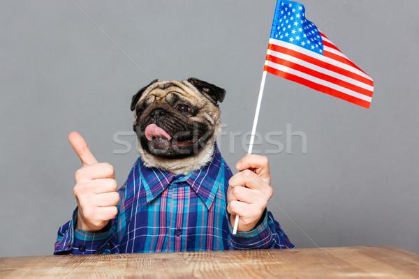 Happy man with pug dog head holding united states flag  Stock photo © deandrobot