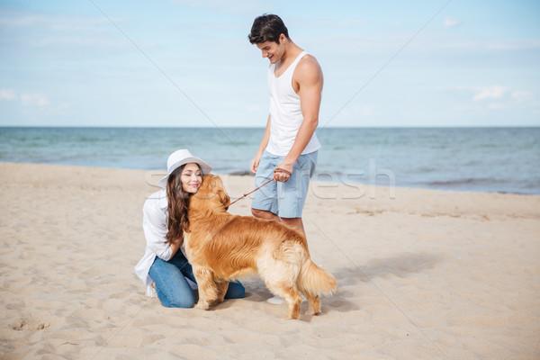 Romantique marche mer rive chien Photo stock © deandrobot