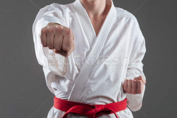 Cropped picture of young sportsman practice in karate Stock photo © deandrobot