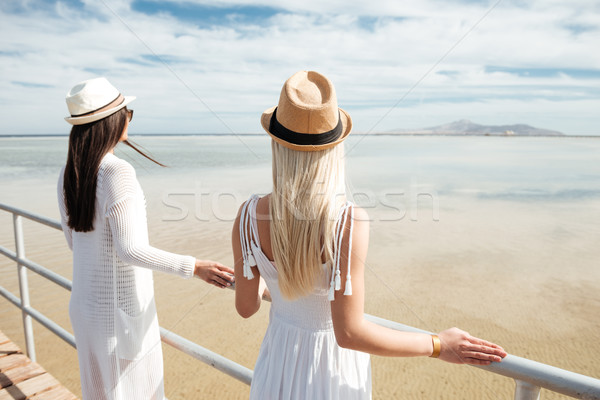 Hátulnézet kettő gyönyörű fiatal nők áll móló Stock fotó © deandrobot