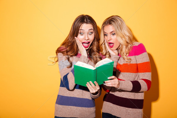 Portrait of two shocked girls dressed in sweaters Stock photo © deandrobot