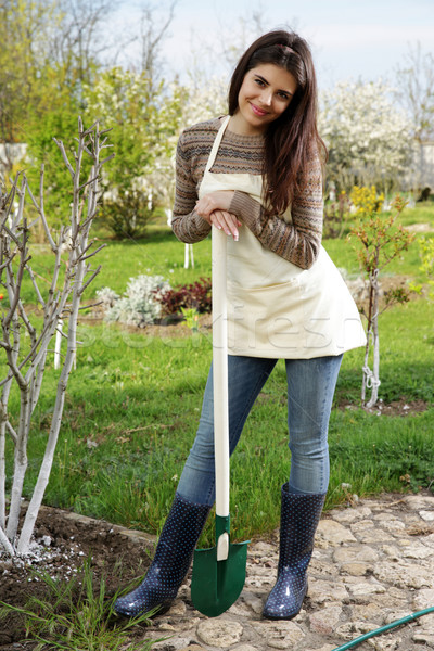 Woman standing with shovel in the garden Stock photo © deandrobot