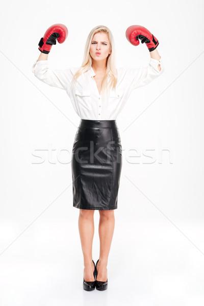 красивой успешный молодые деловая женщина боксерские перчатки Сток-фото © deandrobot
