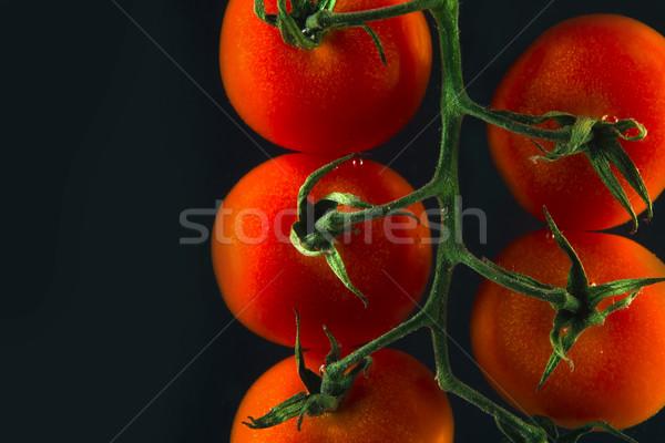 зрелый свежие помидоры черри филиала изолированный черный Сток-фото © deandrobot