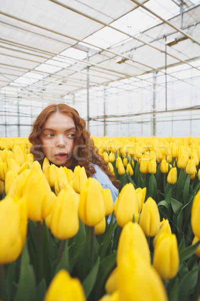 Girl in greenhouse Stock photo © deandrobot