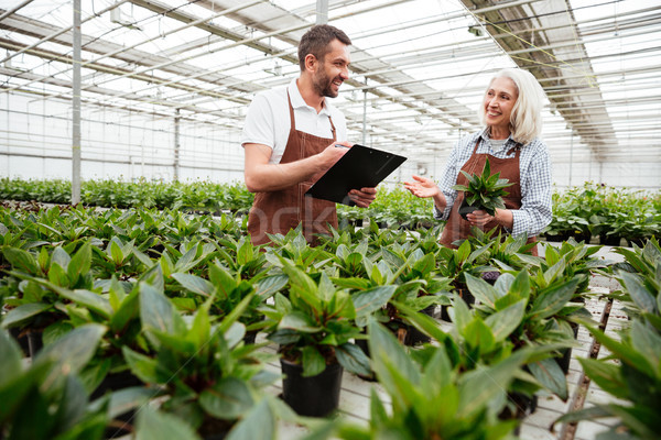 Mosolyog munkások kert néz megérint növények Stock fotó © deandrobot