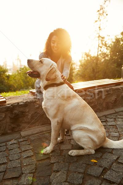 Atış güzel beyaz köpek sahip park Stok fotoğraf © deandrobot