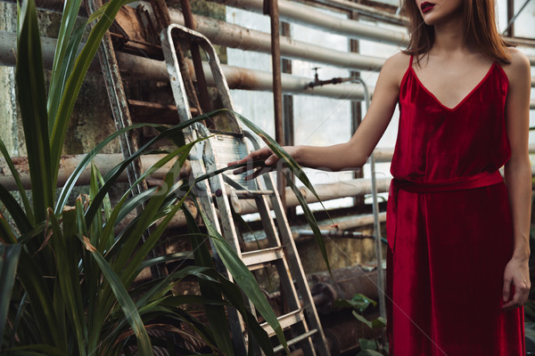 Cropped image of woman posing in greenhouse Stock photo © deandrobot