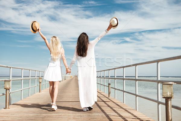 Dois atraente mulheres jovens as mãos levantadas caminhada pier Foto stock © deandrobot