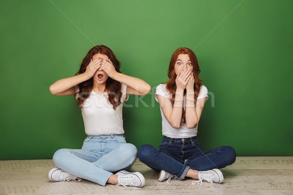 Retrato dos conmocionado jóvenes ninas Foto stock © deandrobot