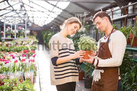 Serious gardeners discussing plants and using tablet in orangery Stock photo © deandrobot