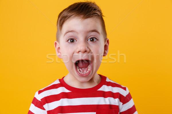 Portret mały chłopca krzyczeć na zewnątrz Zdjęcia stock © deandrobot
