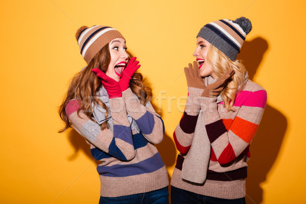 Portrait of two cheery girls dressed in winter clothes Stock photo © deandrobot