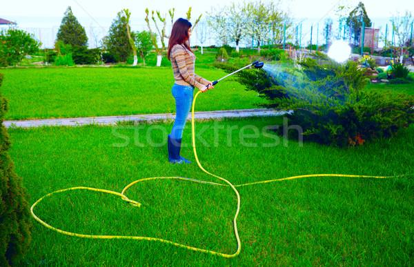 女性 水まき 草 庭園 水 手 ストックフォト © deandrobot