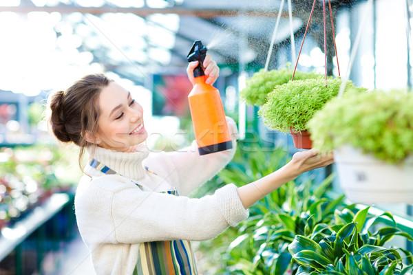 Zadowolony dość młoda kobieta ogrodnik kwiaty roślin Zdjęcia stock © deandrobot