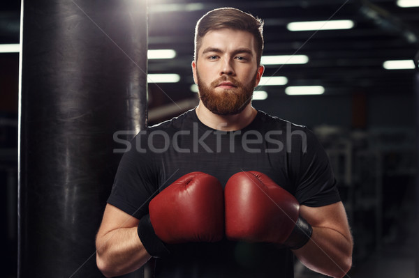 Concentrated young strong sports man boxer posing Stock photo © deandrobot
