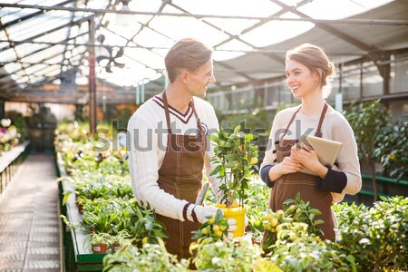 Cheerful woman florist and man gardener taking care of flower  Stock photo © deandrobot