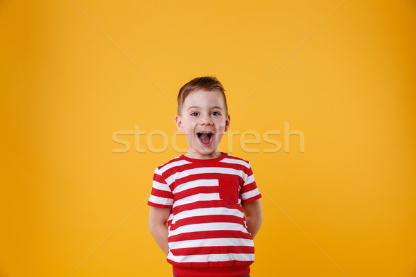 Portrait of a cute little kid standing with mouth open Stock photo © deandrobot