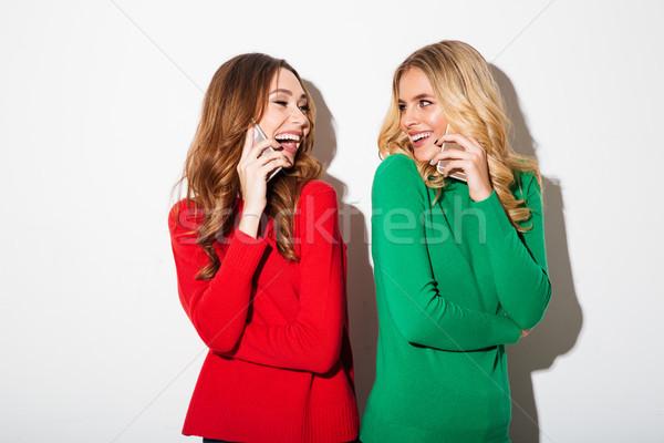 肖像 2 かなり 女の子 話し 携帯電話 ストックフォト © deandrobot