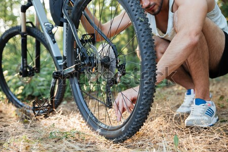 Cropped image of bicycle in forest Stock photo © deandrobot