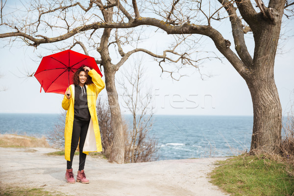Cheerful african curly young lady holding umbrella walking outdoors. Stock photo © deandrobot