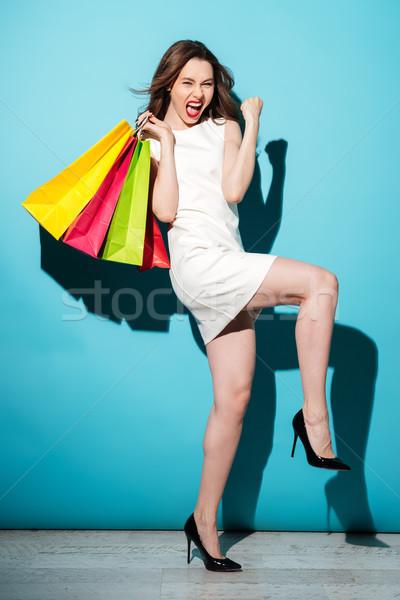Porträt zufrieden Frau halten Einkaufstaschen Stock foto © deandrobot