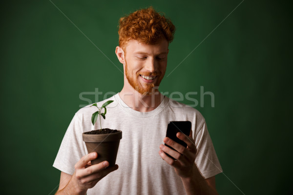 Portrait of young smiling handsome redhead bearded young man, ho Stock photo © deandrobot