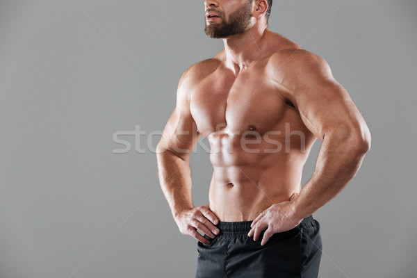 Image musculaire fort torse nu Homme bodybuilder Photo stock © deandrobot