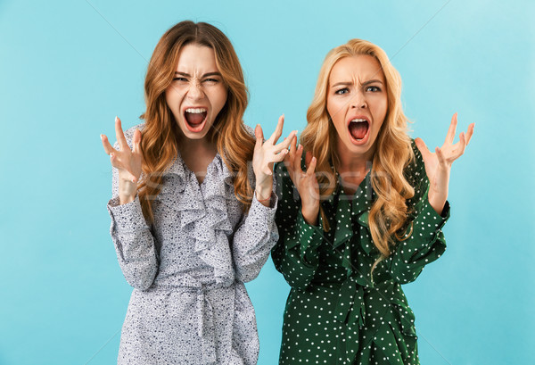 Two angry screaming women in dresses standing together Stock photo © deandrobot