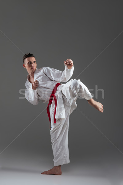 Handsome sportsman dressed in kimono practice in karate Stock photo © deandrobot