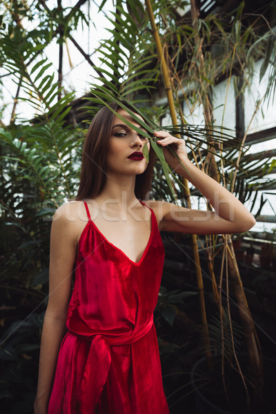 Vertical image of pretty brunette woman in greenhouse Stock photo © deandrobot