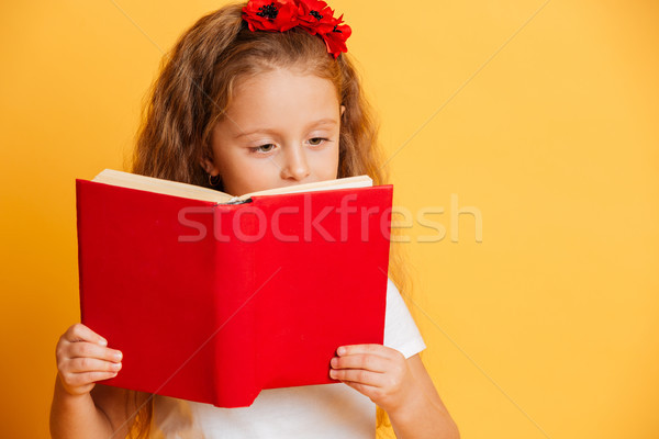 Concentrated little pretty girl reading book looking aside. Stock photo © deandrobot