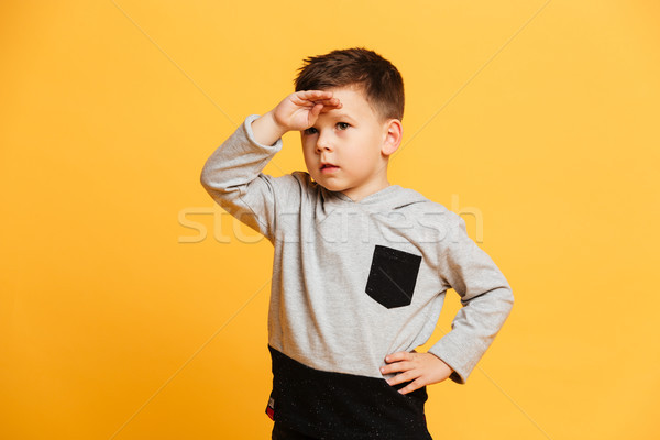 Concentrated little boy child Stock photo © deandrobot