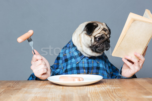 Man with pug dog head eating sausages and reading book Stock photo © deandrobot