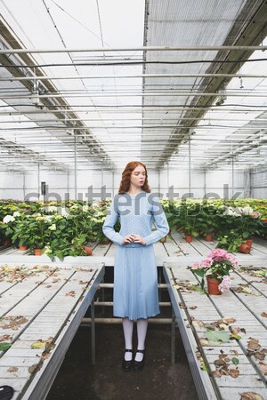 Redheaded girl standing in a glass house full of cacti Stock photo © deandrobot