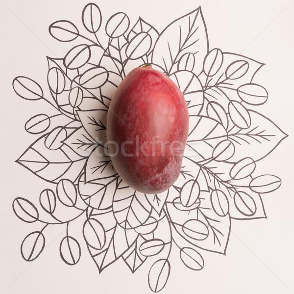 Mango frutta contorno floreale natura Foto d'archivio © deandrobot