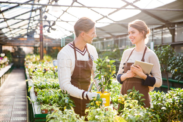 Woman and man gardeners taking care of plants in greenhouse  Stock photo © deandrobot