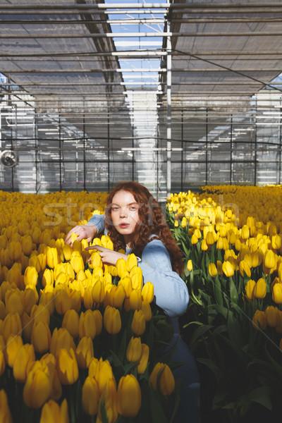 Girl looking camera Stock photo © deandrobot