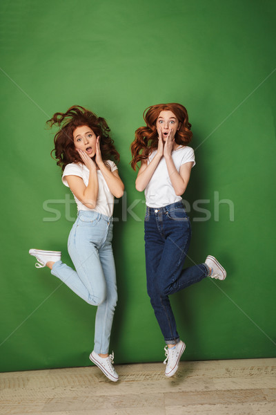Full length photo of two surprised redhead girls 20s in white t- Stock photo © deandrobot